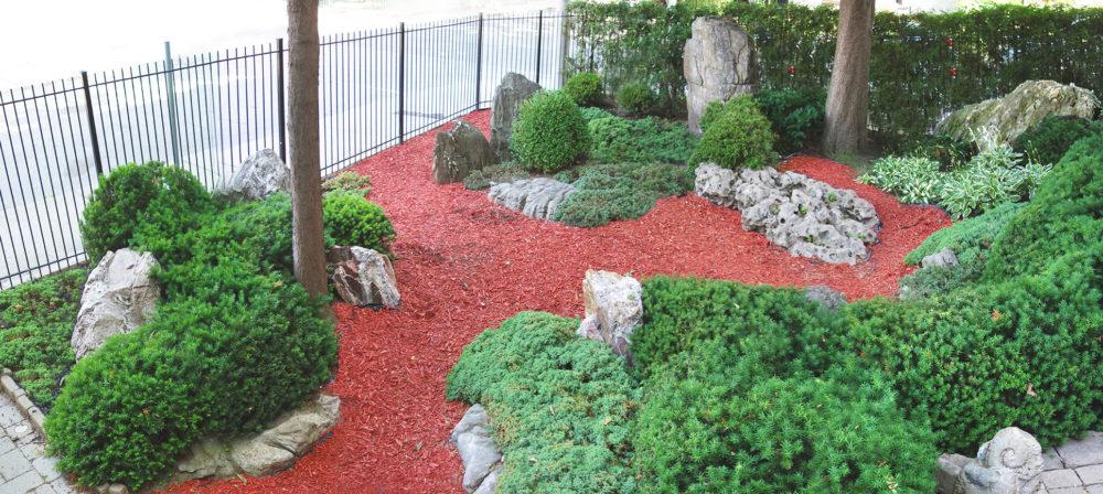 front garden 4
